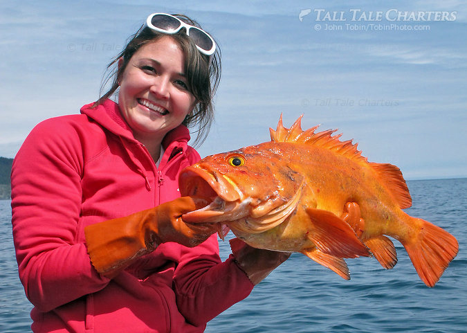 Beautiful Girl, Pretty Fish