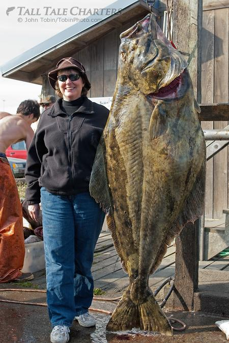 Halibut Fishing Homer