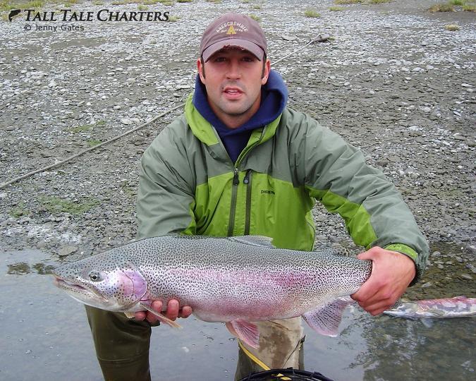 Kenai Rainbow Trout