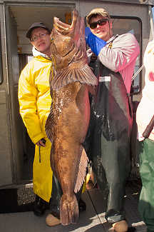 Monster Lingcod