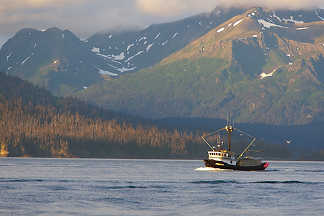Fishing Boat - Homer Alaska