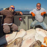 Halibut Fishing Homer AK